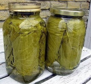 Preserving vine leaves